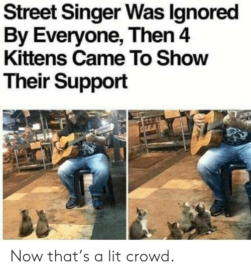 Lit, Kittens, and Singer: Street Singer Was lgnored  By Everyone, Then 4  Kittens Came To Show  Their Support Now that's a lit crowd.