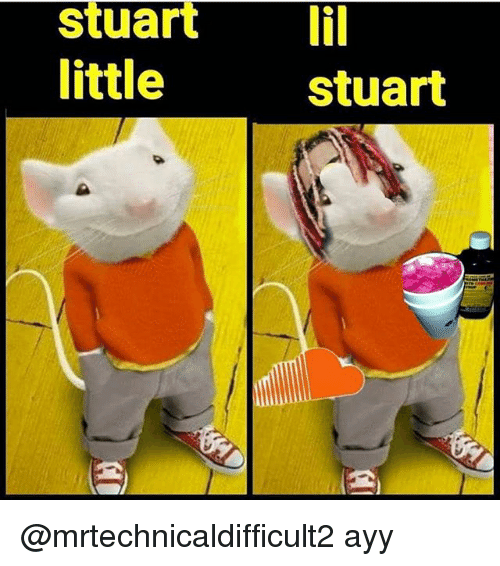 Dank Memes, Lil, and Ayy: Stuart lil  little  stuart @mrtechnicaldifficult2 ayy
