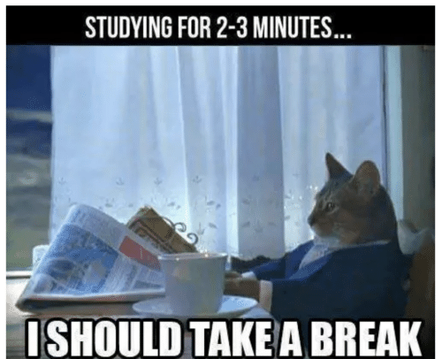 Break, For, and Studying: STUDYING FOR 2-3 MINUTES..  ISHOULD TAKEA BREAK