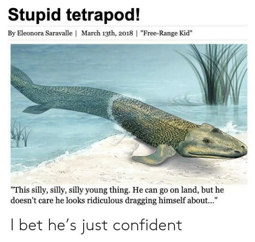 """I Bet, Reddit, and Free: Stupid tetrapod!  By Eleonora Saravalle 