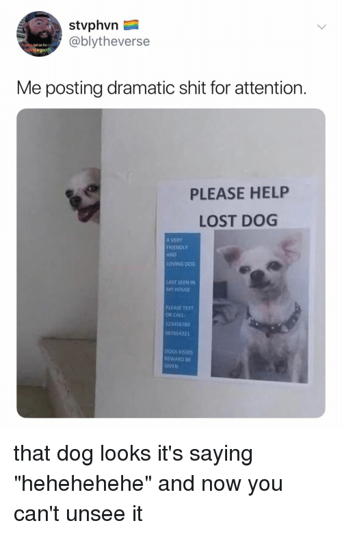 """Dad, My House, and Shit: stvphvn  @blytheverse  h just a dad on the i  avinga good  Me posting dramatic shit for attention.  PLEASE HELP  LOST DOG  A VERY  FRIENOLY  AND  OVING DOG  AST SEEN IN  MY HOUSE  PLEASE TEXT  OR CALL  23456789  7454321  OGS KISSES  EWARD BE  GIVEN that dog looks it's saying """"hehehehehe"""" and now you can't unsee it"""