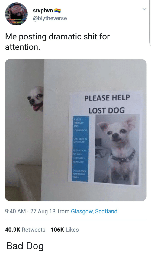 Bad, Dad, and My House: stvphvn  @blytheverse  hjust a dad on the i  ving a good  Me posting dramatic shit for  attention.  PLEASE HELP  LOST DOG  A VERY  FRIENOLY  AND  LOVING DOG  AST SEEN IN  MY HOUSE  PLEASE TEXT  OR CALL  123456789  9765432  EWARD BE  9:40 AM 27 Aug 18 from Glasgow, Scotland  40.9K Retweets 106K Likes Bad Dog