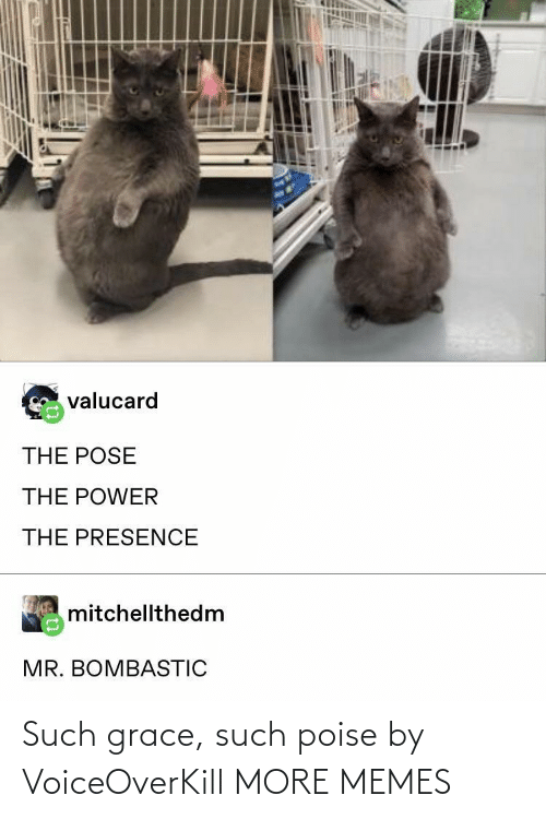 grace: Such grace, such poise by VoiceOverKill MORE MEMES