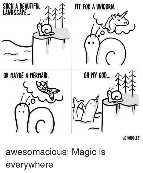 A Unicorn: SUCHA BEAUTIFUL  LANDSCAPE  FIT FOR A UNICORN  OR MAYBE A MERMAID  OH My GOD  소서.  JC DOODLES awesomacious:  Magic is everywhere