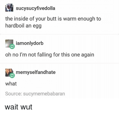 Wait Wut: sucysucyfivedolla  the inside of your butt is warm enough to  hardboil an egg  iamonlydorb  oh no l'm not falling for this one again  memyselfandhate  what  Source: sucymemebabaran wait wut