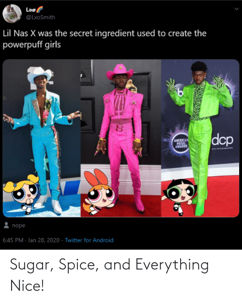 Sugar, Nice, and Spice: Sugar, Spice, and Everything Nice!