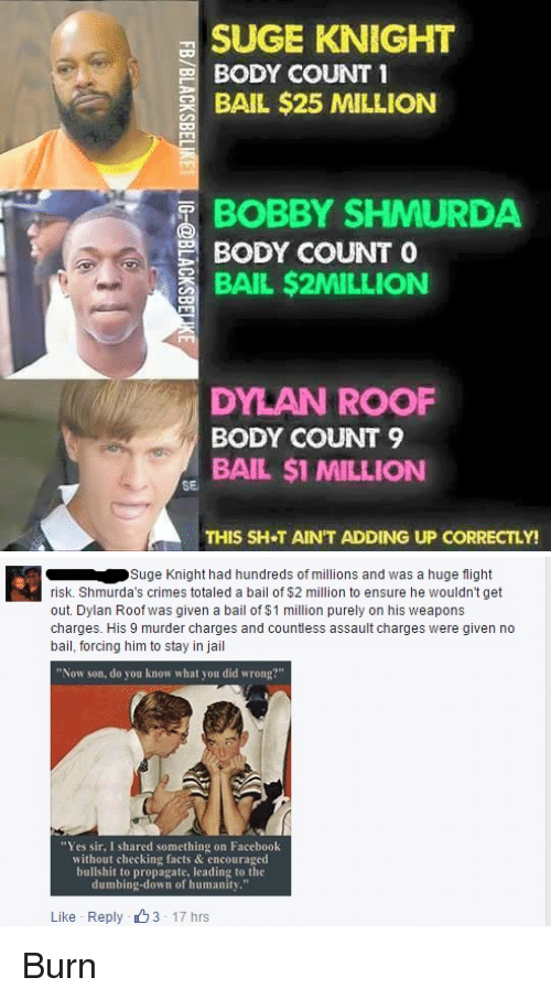 """Dylan Roof: SUGE KNIGHT  BODY COUNT 1  BAIL $25 MILLION  BOBBY SHMURDA  BODY COUNT  O  BAIL $2MILLION  DYLAN ROOF  BODY COUNT 9  BAIL $1 MILLION  SE  THIS SH T AIN'T ADDING UP CORRECTLY!   Suge Knight had hundreds of millions and was a huge flight  risk. Shmurda's crimes totaled a bail of $2 million to ensure he wouldn't get  out. Dylan Roof was given a bail of $1 million purely on his weapons  charges. His 9 murder charges and countless assault charges were given no  bail, forcing him to stay in jail  """"Now son, do you know what you did wrong?""""  """"Yes sir, I shared something on Facebook  without checking facts & encouraged  bullshit to propagate, leading to the  dumbing-down of humanity.""""  Like Reply 3 17 hrs Burn"""