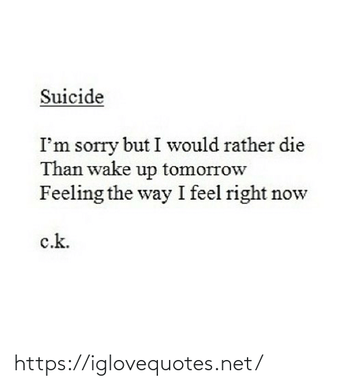 Suicide: Suicide  I'm sorry but I would rather die  Than wake up tomorrow  Feeling the way I feel right now  c.k. https://iglovequotes.net/