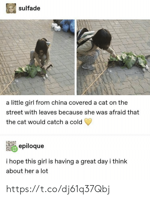 A Cold: sulfade  a little girl from china covered a cat on the  street with leaves because she was afraid that  the cat would catch a cold  epiloque  i hope this girl is having a great day i think  about her a lot https://t.co/dj61q37Qbj