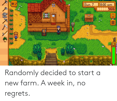 Sun, Start A, and New: Sun. 7  8:00 am  +:  566 Randomly decided to start a new farm. A week in, no regrets.
