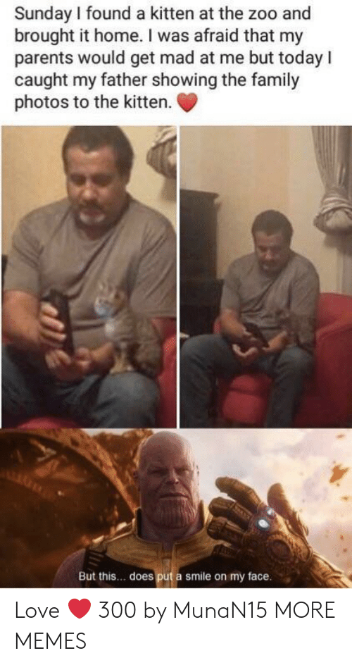 Dank, Family, and Love: Sunday I found a kitten at the zoo and  brought it home. I was afraid that my  parents would get mad at me but todayI  caught my father showing the family  photos to the kitten  But this.. does put a smile on my face Love ❤️ 300 by MunaN15 MORE MEMES