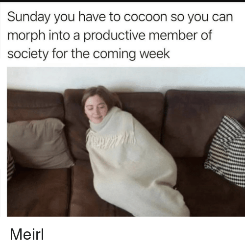 cocoon: Sunday you have to cocoon so you can  morph into a productive member of  society for the coming week Meirl