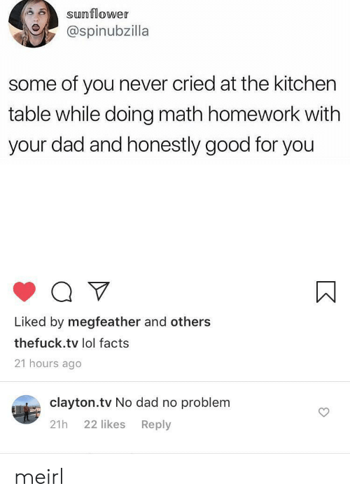 Dad, Facts, and Good for You: sunflower  @spinubzilla  some of you never cried at the kitchen  table while doing math homework with  your dad and honestly good for you  Liked by megfeather and others  thefuck.tv lol facts  21 hours ago  clayton.tv No dad no problem  22 likes  Reply  21h meirl