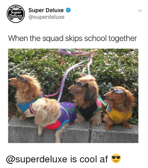 When The Squad: Super Deluxe  xe @superdeluxe  Super  Deluxe  When the squad skips school together @superdeluxe is cool af 😎