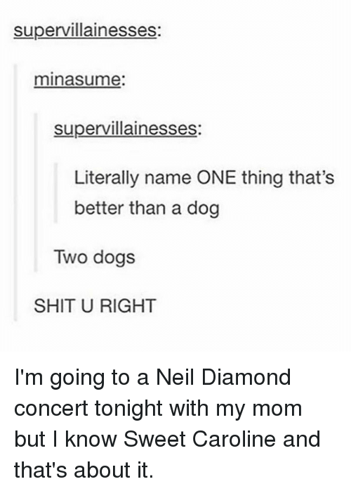 neile: supervillainesses:  minasume:  supervillainesses:  Literally name ONE thing that's  better than a dog  Two dogs  SHIT U RIGHT I'm going to a Neil Diamond concert tonight with my mom but I know Sweet Caroline and that's about it.