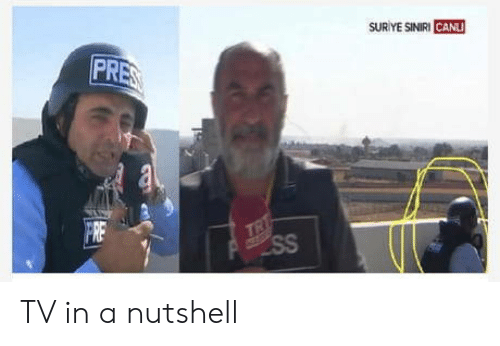 In a Nutshell, Fre, and  /Tv/ : SUR YE SINIRI CANLI  PRES  TRT  SS  FRE TV in a nutshell