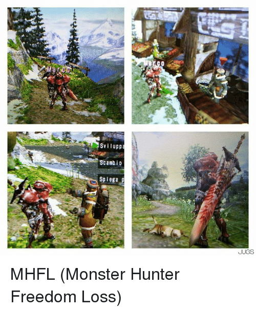 Svilupp Scambio Spiega P Jugs Mhfl Monster Hunter Freedom Loss