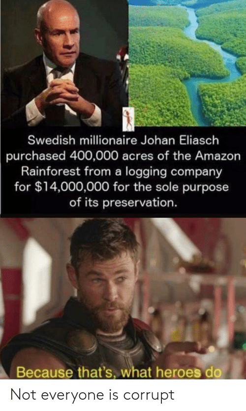 Acres: Swedish millionaire Johan Eliasch  purchased 400,000 acres of the Amazon  Rainforest from a logging company  for $14,000,000 for the sole purpose  of its preservation.  Because that's, what heroes do Not everyone is corrupt