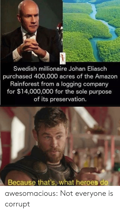 Corrupt: Swedish millionaire Johan Eliasch  purchased 400,000 acres of the Amazon  Rainforest from a logging company  for $14,000,000 for the sole purpose  of its preservation.  Because that's, what heroes do awesomacious:  Not everyone is corrupt