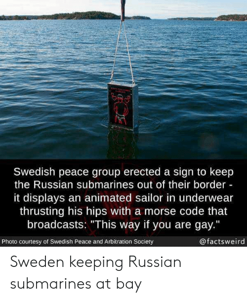 "You Are Gay: Swedish peace group erected a sign to keep  the Russian submarines out of their border  it displays an animated sailor in underwear  thrusting his hips with a morse code that  broadcasts: ""This way if you are gay.""  Photo courtesy of Swedish Peace and Arbitration Society  @factsweird Sweden keeping Russian submarines at bay"