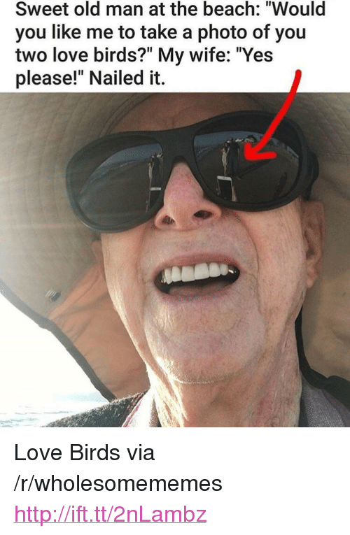 """love birds: Sweet old man at the beach: """"Would  you like me to take a photo of you  two love birds?"""" My wife: """"Yes  please!"""" Nailed it. <p>Love Birds via /r/wholesomememes <a href=""""http://ift.tt/2nLambz"""">http://ift.tt/2nLambz</a></p>"""