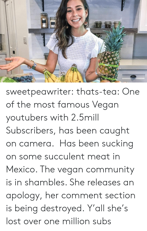 Comment Section: sweetpeawriter: thats-tea:    One of the most famous Vegan youtubers with 2.5mill Subscribers, has been caught on camera.  Has been sucking on some succulent meat in Mexico. The vegan community is in shambles. She releases an apology, her comment section is being destroyed.  Y'all she's lost over one million subs