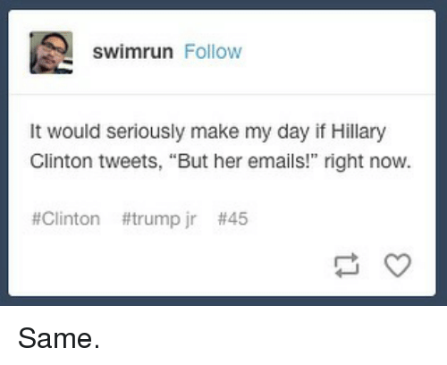 "Clinton Trump: swimrun Follow  It would seriously make my day if Hillary  Glinton tweets, ""But her emails!"" right now.  #Clinton #trump jr Same."