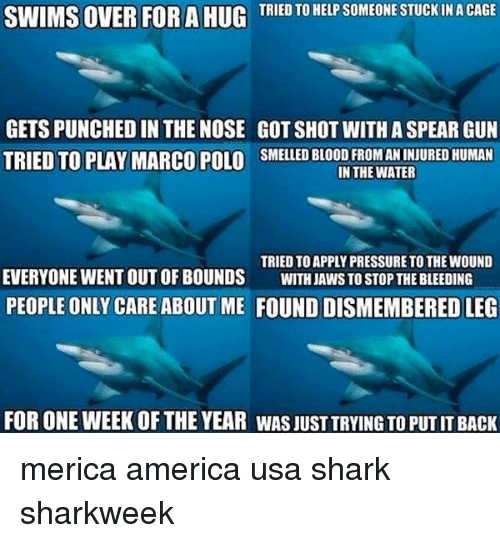 sharking: SWIMS OVER FOR A HUG  TRIED TO HELP SOMEONE STUCK IN A CAGE  GETS PUNCHED IN THE NOSE GOT SHOT WITH A SPEAR GUN  TRIED TO PLAY MARCO POLO SMELLED BLOOD FROM AN INJURED HUMAN  IN THE WATER  TRIED TO APPLY PRESSURE TO THE WOUND  EVERYONE WENT OUT OF BOUNDS WITH JAWS TO STOP THE BLEEDING  PEOPLE ONLY CARE ABOUT ME FOUND DISMEMBERED LEG  FOR ONE WEEK OF THE YEAR WAS JUST TRYING TO PUT IT BACK merica america usa shark sharkweek