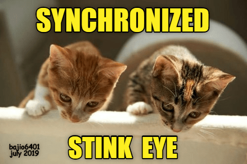 stink: SYNCHRONIZED  STINK EYE  bajio6401  july 2019