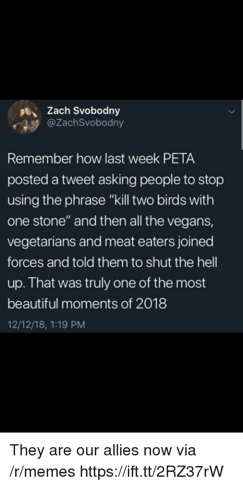 "Beautiful, Memes, and Peta: sZach Svobodny  @ZachSvobodny  Remember how last week PETA  posted a tweet asking people to stop  using the phrase ""kill two birds with  one stone"" and then all the vegans,  vegetarians and meat eaters joined  forces and told them to shut the hell  up. That was truly one of the most  beautiful moments of 2018  12/12/18, 1:19 PM They are our allies now via /r/memes https://ift.tt/2RZ37rW"
