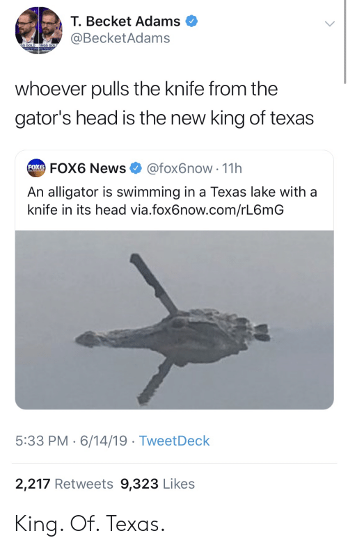 Head, News, and Alligator: T. Becket Adams  @BecketAdams  GS GOLD  INGS GOLD  whoever pulls the knife from the  gator's head is the new king of texas  @fox6now 11h  FOX6 News  FOX6  An alligator is swimming in a Texas lake with a  knife in its head via.fox6now.com/rL6mG  5:33 PM 6/14/19 TweetDeck  2,217 Retweets 9,323 Likes King. Of. Texas.
