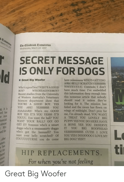 yesss: t Ca  March 22.2n  The Ellenbrook Trainstation  Wednesday March 22, 2017  SECRET MESSAGE  IS ONLY FOR DOGS  Great Big woofer  here yesssssssss WHO'S GETTING  ABIG BELLYSCRATCH YESSSSSS  Who's a good boy? WHO'SAGOOD YOUUUUUUU. Comrade, I don't  BOY? WHOSSAGOODBOY? have much time. I've embedded  Recent studies from the University this information deep enough into  of Western Australia's Veterinary this nonsense article that nobody  Sciences department show that should read it unless they're  YOURE A GOOD BOY. YES looking for it. The mission has  YOU ARE! YESSSSSS YOU failed and the raven has flown on  AAAAAARE! Who's my GOOD wings of midnight. Don't pray for  BOY YES IT'S YOU YESSS ITS me, I'm already dead. YOU WANT  YOUUU. You want the ball? YOU A TREAT YOU LOVELY BIG  WANT YOUR BALL? GO! GO PUPPY YES YOU DO HERE HAVE  GET IT! Yessssss who's a smart A BONE YES YOU DESERVE  doggo who's a smaaaaaarty doggo IT YOU BIG BOOFHEAD  who's got the baaaaalll? You YESSSSSSSSSS CUTIE I LOVE  want your belly scratched? Of YOUYES I DO0000OI LOVE MY  it is  has  iron  g,  rd  e  nancial  almost  Mrs  ed for  Lo  ti  COUUUUUURSE you do come BIG DOG! YES!!  ctor  HIP REPLACEMENTS,  For when you're not feeling Great Big Woofer
