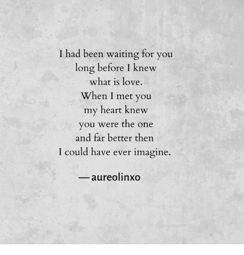 What Is Love: T had been waiting for you  long before I knew  what is love  When I met you  my heart knew  you were the one  and far better then  could have ever imagine.  aureolinxo