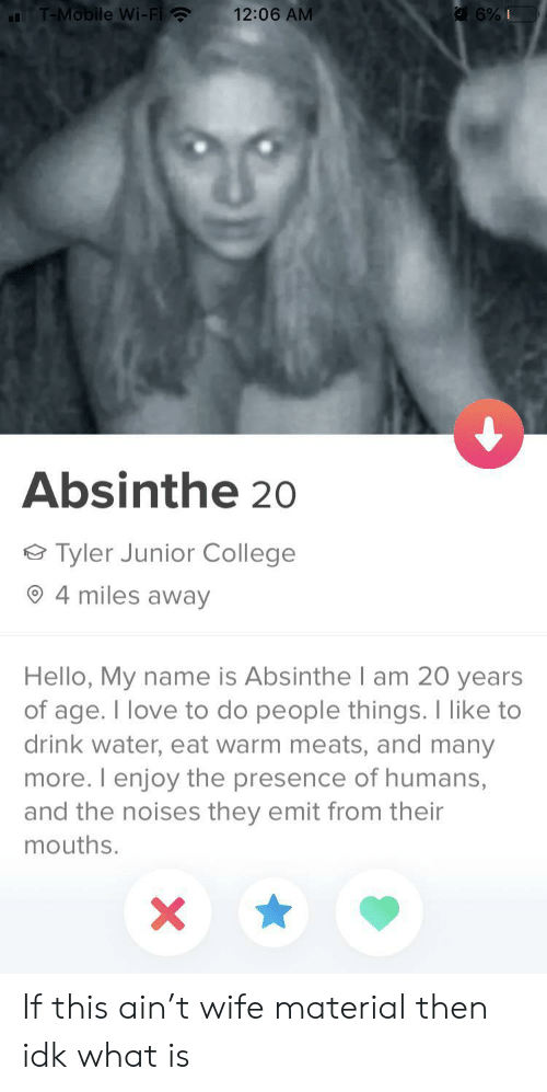 Of Age: T-Mobile Wi-Fi  12:06 AM  6%I  Absinthe 20  Tyler Junior College  4 miles away  Hello, My name is Absinthel am 20 years  of age. I love to do people things. I like to  drink water, eat warm meats, and many  more. I enjoy the presence of humans,  and the noises they emit from their  mouths.  X If this ain't wife material then idk what is