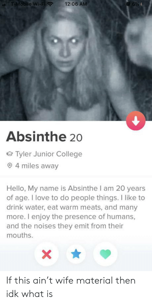 Of Age: T-Mobile Wi-Fi  12:06 AM  a 6%  Absinthe 20  Tyler Junior College  4 miles away  Hello, My name is Absinthe I am 20 years  of age. I love to do people things. I like to  drink water, eat warm meats, and many  more. I enjoy the presence of humans,  and the noises they emit from their  mouths. If this ain't wife material then idk what is