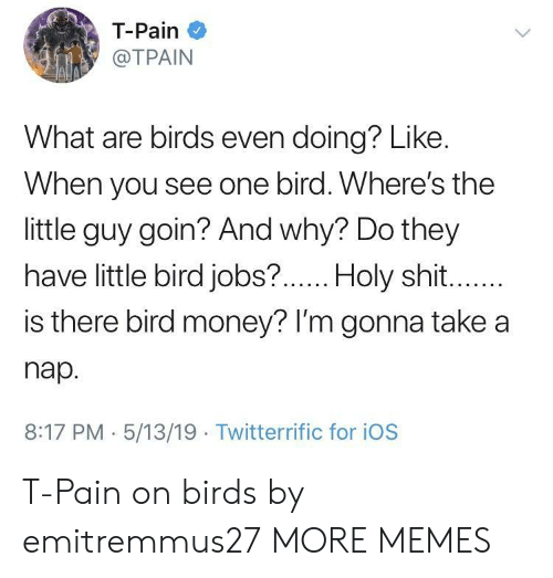Take A Nap: T-Pain  @TPAIN  What are birds even doing? Like.  When you see one bird. Where's the  little guy goin? And why? Do they  have little bird jobs?  .Holy shit  is there bird money? lI'm gonna take a  nap.  8:17 PM 5/13/19 Twitterrific for iOS T-Pain on birds by emitremmus27 MORE MEMES