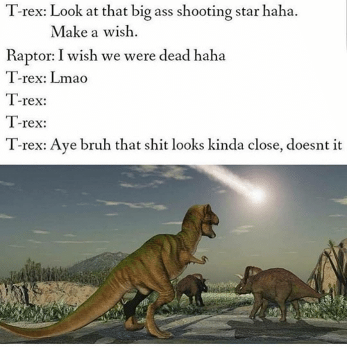 raptor: T-rex: Look at that big ass shooting star haha.  Make a wish  Raptor: I wish we were dead haha  T-rex: Lmao  T-rex:  T-rex:  T-rex: Ave bruh that shit looks kinda close, doesnt it