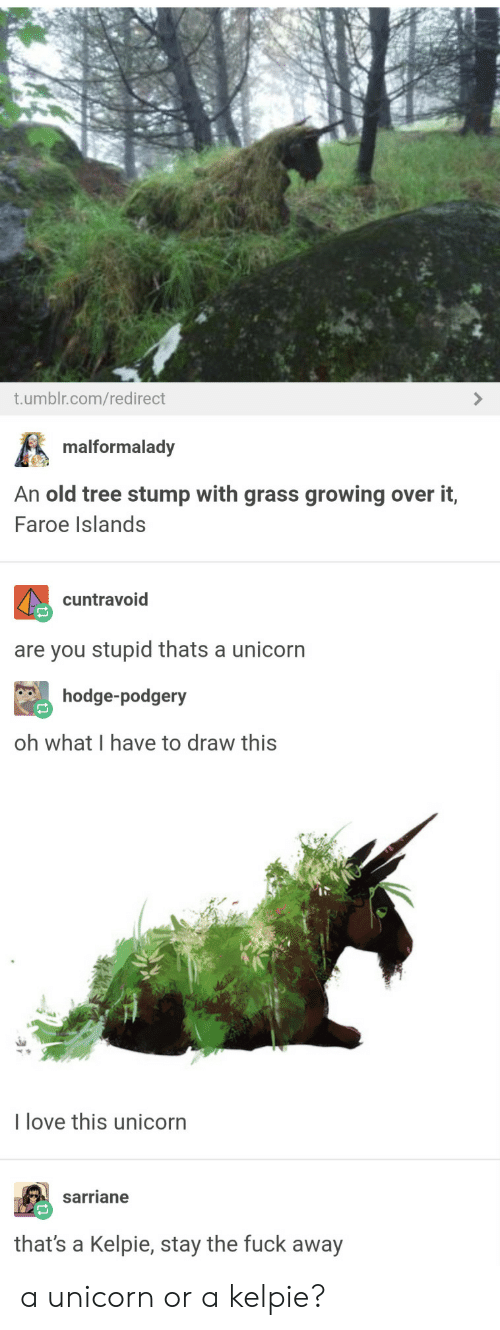 A Unicorn: t.umblr.com/redirect  malformalady  An old tree stump with grass growing over it,  Faroe Islands  cuntravoid  are you stupid thats a unicorn  hodge-podgery  oh what I have to draw this  It.  I love this unicorn  sarriane  that's a Kelpie, stay the fuck away a unicorn or a kelpie?