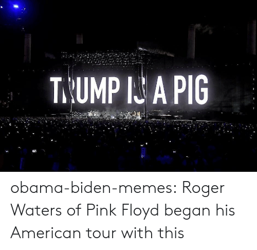 Obama Biden: T.UMP I A PIG obama-biden-memes: Roger Waters of Pink Floyd began his American tour with this