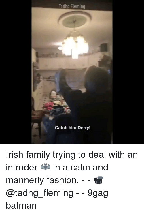 Catched: Tadhg Fleming  Catch him Derry! Irish family trying to deal with an intruder 🦇 in a calm and mannerly fashion. - - 📹@tadhg_fleming - - 9gag batman