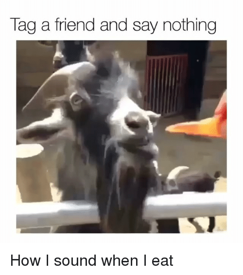 Funny, How, and Sound: Tag a friend and say nothing How I sound when I eat