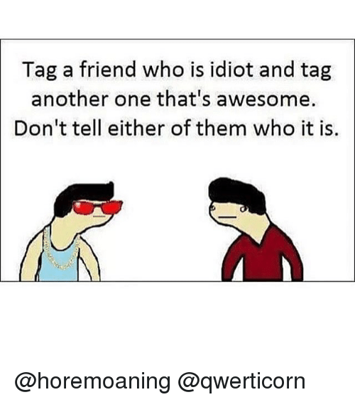 Another One, Memes, and Awesome: Tag a friend who is idiot and tag  another one that's awesome.  Don't tell either of them who it is. @horemoaning @qwerticorn