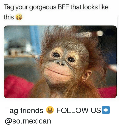 Friends, Memes, and Gorgeous: Tag your gorgeous BFF that looks like  this Tag friends 😬 FOLLOW US➡️ @so.mexican