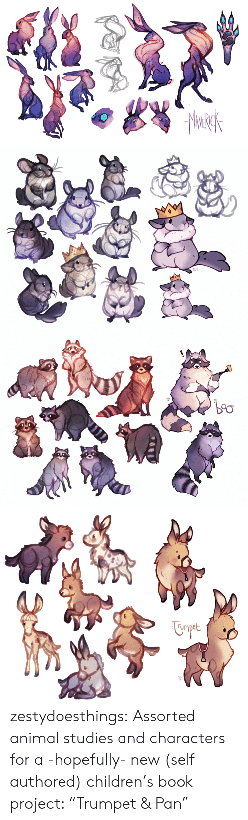 """Children, Tumblr, and Animal: TAI   rmpet  TA' zestydoesthings:  Assorted animal studies and characters for a -hopefully- new (self authored) children's book project: """"Trumpet & Pan"""""""