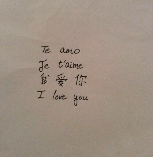 Love, I Love You, and You: t'aime  t、爱你  I love you
