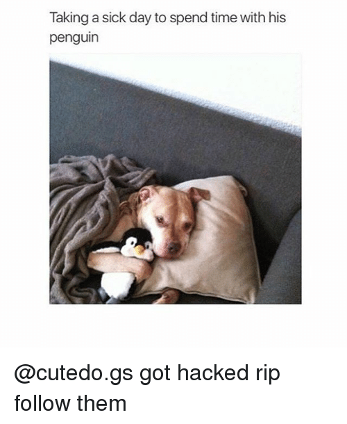 Sick Day: Taking a sick day to spend time with his  penguin @cutedo.gs got hacked rip follow them