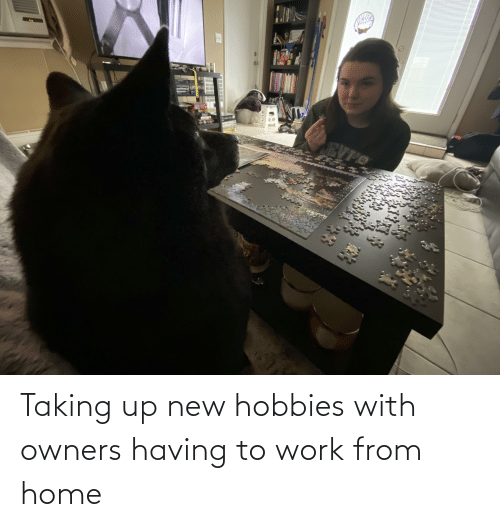 Owners: Taking up new hobbies with owners having to work from home