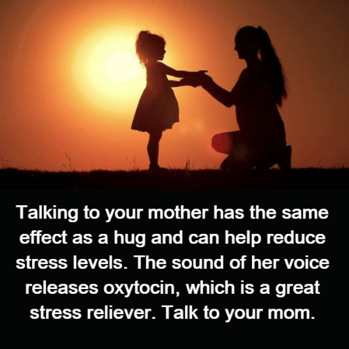 Memes, Help, and Mom: Talking to your mother has the same  effect as a hug and can help reduce  St oice  releases oxytocin, which is a great  stress reliever. Talk to your mom  ress levels. The sound of her v