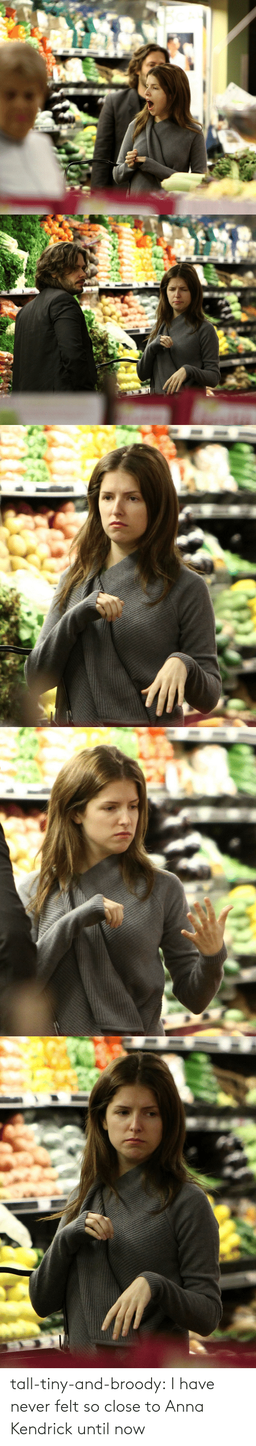anna kendrick: tall-tiny-and-broody:  I have never felt so close to Anna Kendrick until now