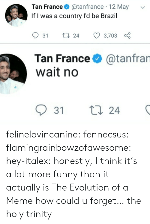 Brazil: Tan France@tanfrance 12 May  If l was a country l'd be Brazil  31 ti 24 3,703  Tan France  wait no  @tanfran  31 t  24 felinelovincanine:  fennecsus:   flamingrainbowzofawesome:  hey-italex: honestly, I think it's a lot more funny than it actually is The Evolution of a Meme  how could u forget…   the holy trinity